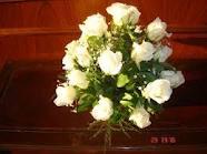 gambar_bunga_mawar_putih