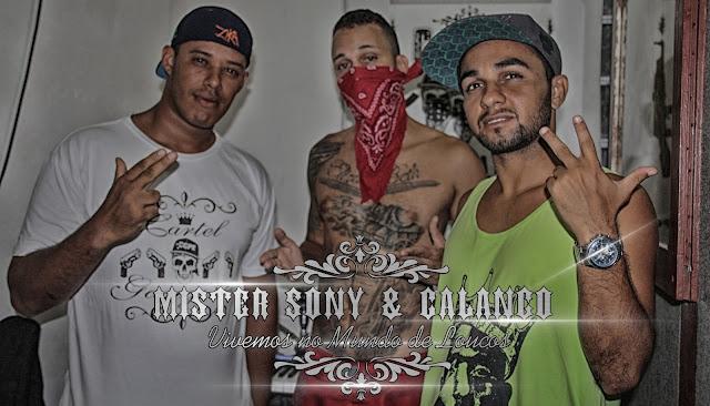 http://www.mediafire.com/download/ujqcosva3pcdnq7/Mister_Sony_e_Calango_-_Vivemos_no_Mundo_de_Loucos_REMIX.mp3