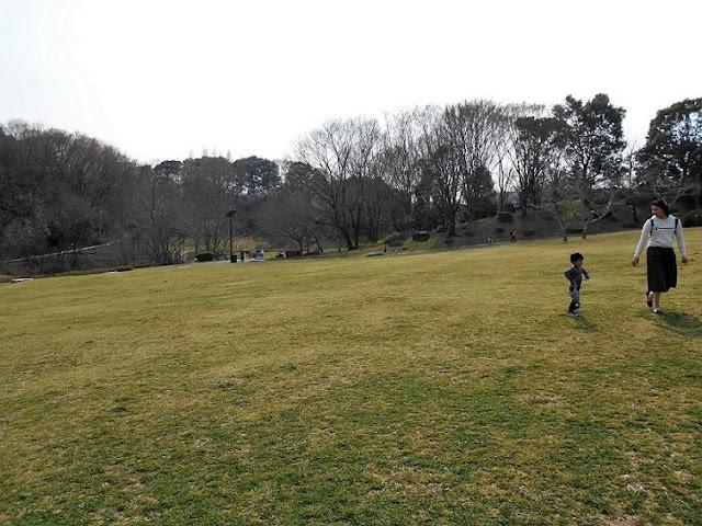 自然博物館の公園2