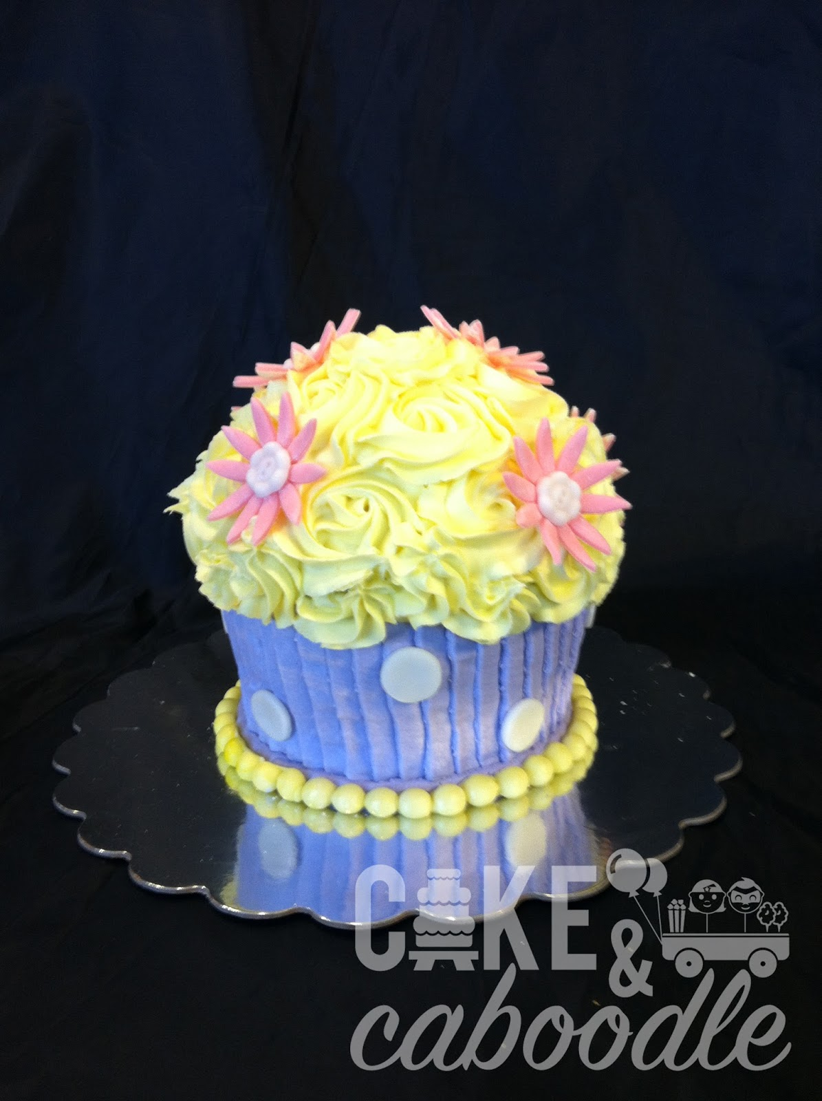 cupcake smash cake cake and caboodle