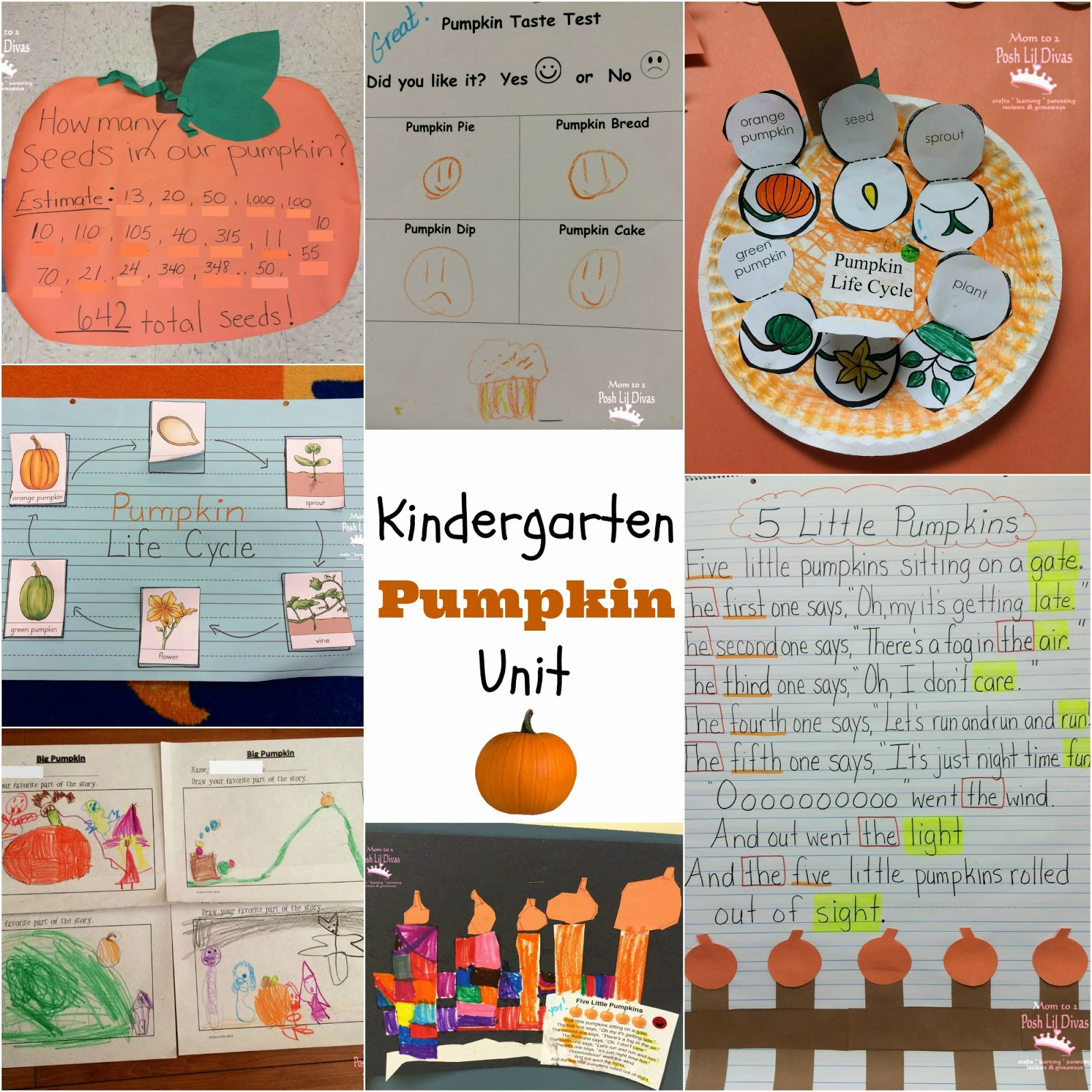 We Learned All About The Pumpkin Life Cycle And Made This Cute Little Life Cycle Sequencing