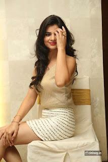 Kamna-Ranawat-Stills-at-Selfie-Raja-Movie-Success-Meet