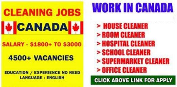 airline cleaners needed in canada