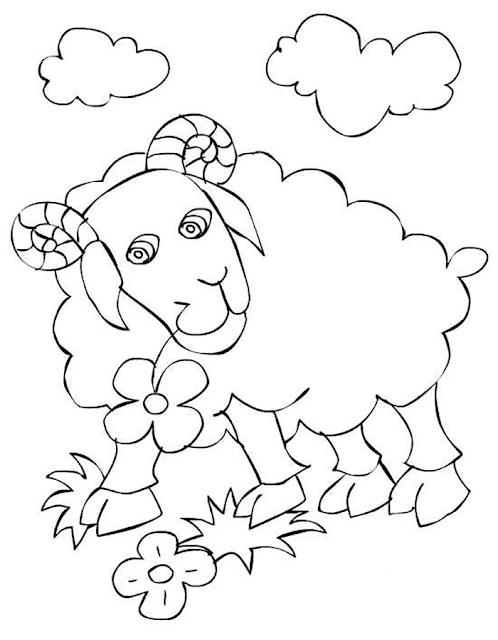 Gambar Mewarnai Domba - 5