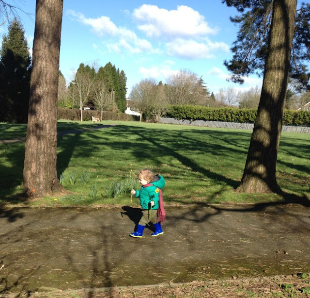 toddler walking on path in park carrying daffodil.
