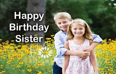 Birthday Wishes Sms for Sister in Hindi