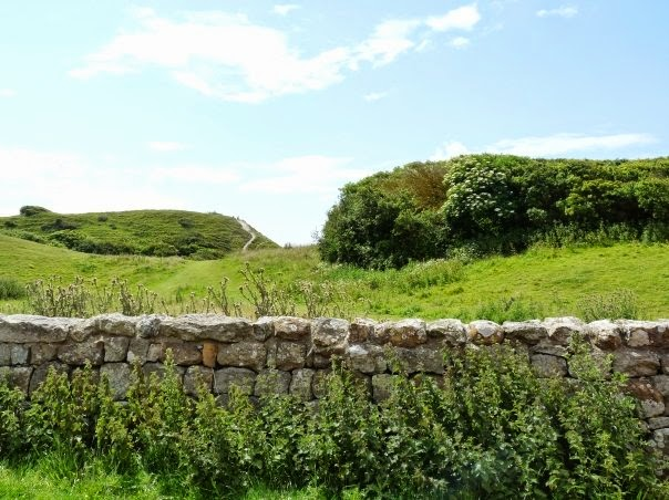 Lush green hill with a stone wall on the Isle of Wight