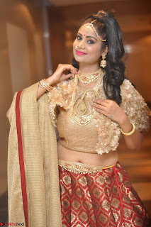 Mehek in Designer Ethnic Crop Top and Skirt Stunning Pics March 2017 024.JPG