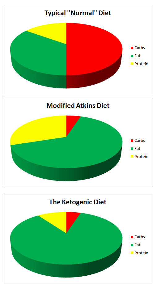 ketogenic for Modified adults diet