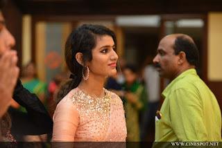 Priya Varrier Saree Pos 9