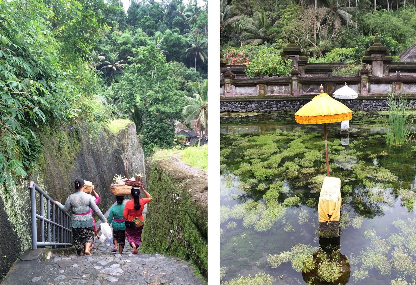 Bali | Sevengrams