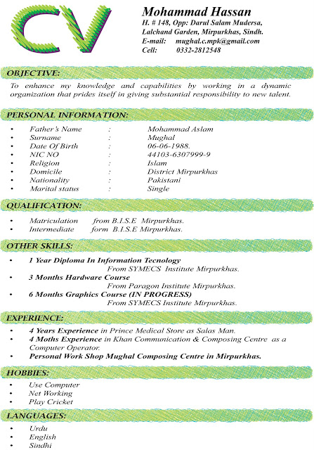 CV FORMATS & NOTES: New Latest Cv Formats 2012-2013, black cv format ...