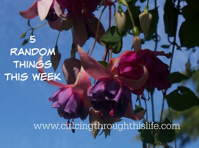 5 Random Things This Week at Circling Through This Life