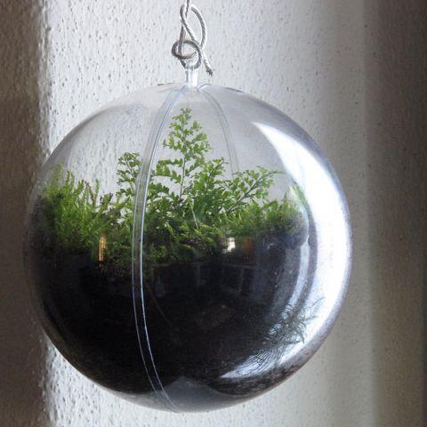 cara membuat bola gantung tanaman