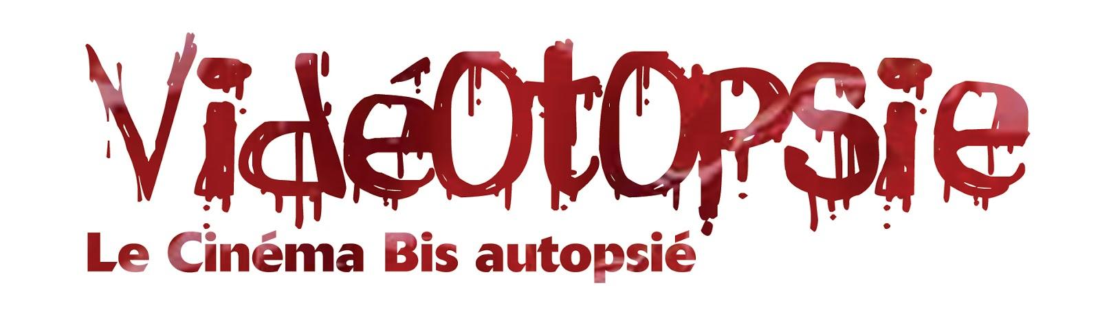 Logo%2BVideotopsie.jpg