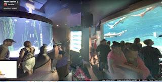 OdySea Aquarium is a marine aquarium