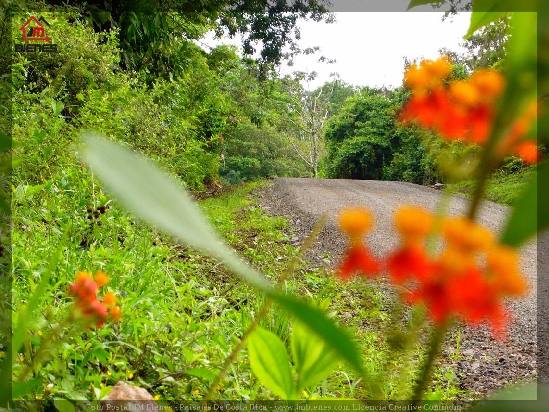 Caminos De Lastre Y Piedra En Tronadora De Tilarán Guanacaste