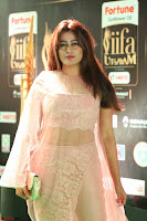 Nidhi Subbaiah Glamorous Pics in Transparent Peachy Gown at IIFA Utsavam Awards 2017  HD Exclusive Pics 35.JPG