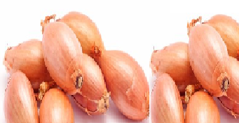 Shallots meaning in hindi, Spanish, tamil, telugu, malayalam, urdu, kannada name, gujarati, in marathi, indian name, marathi, tamil, english, other names called as, translation