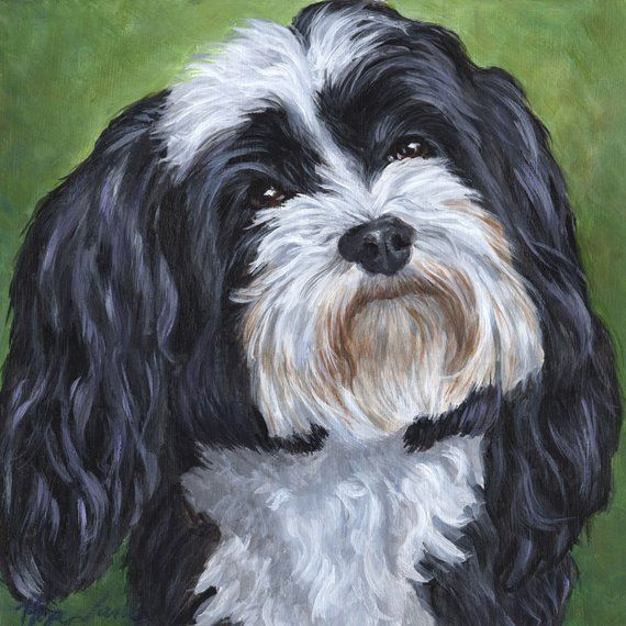 Black And White Dog Paintings
