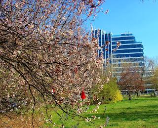 bulgaria_spring