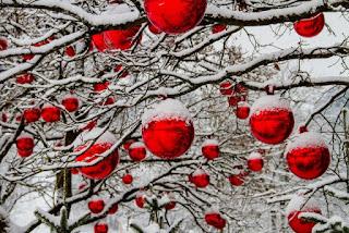 bulgaria, forecast, Weather, snow,