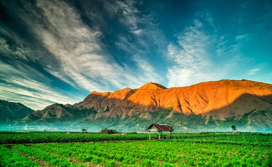Here Sembalun Lawang Village altitude 1,150 m National Park Of Mount Rinjani