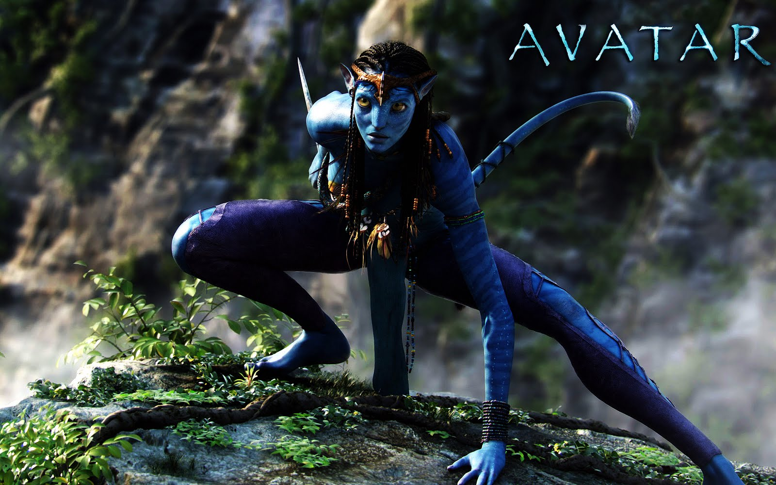 Free Hd Movie Download Point Avatar 2009 Free Hd Movie: Download Wallpaper Avatar For Your Desktop