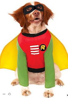 Halloween, Disfraz para Mascotas