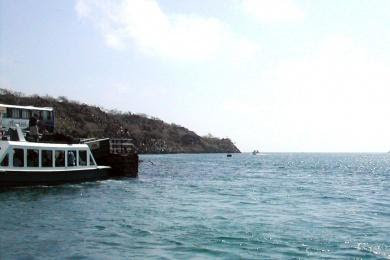 Turismo en Ecuador Isla Santa Clara
