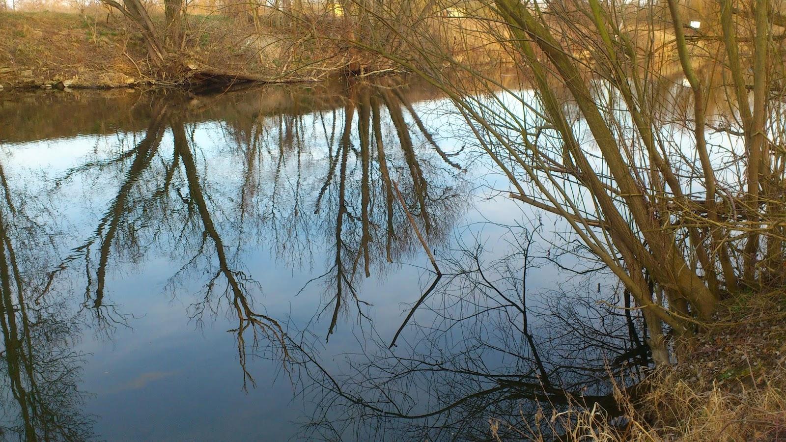 Река Saale 03.03.2014