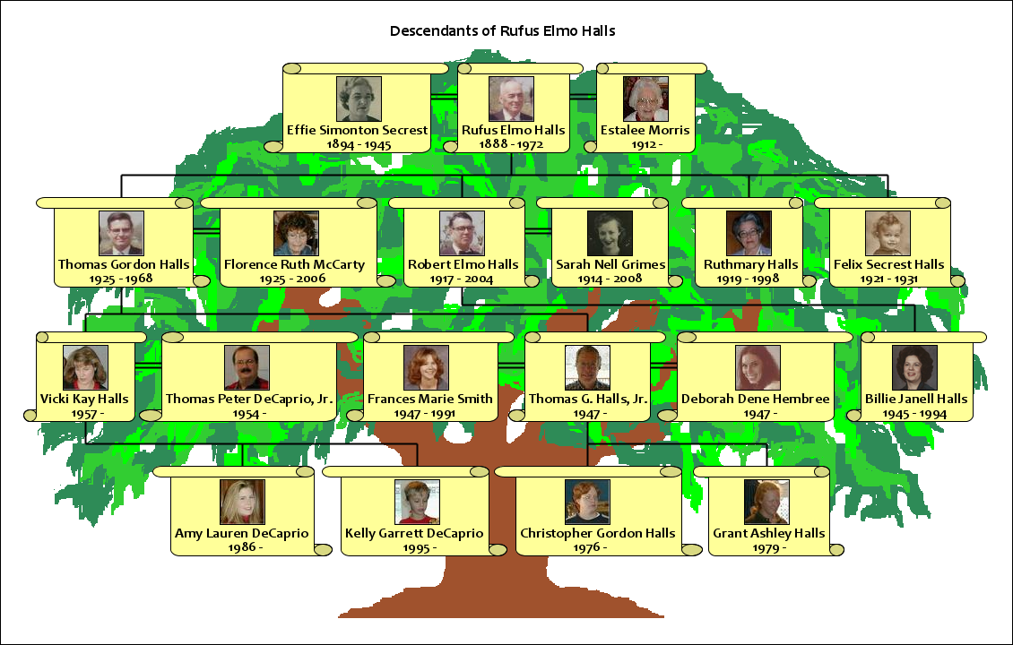 picture of a family tree template - how to make a family tree using your own family