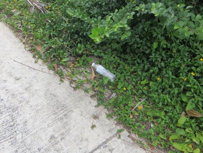 Пустая бутылка на дороге