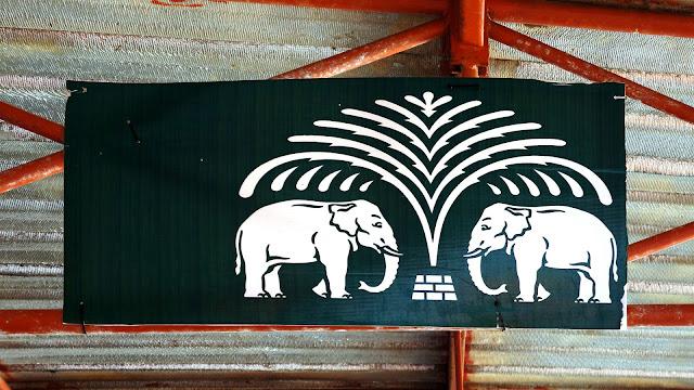 Изображение двух слонов под пальмой на пароме