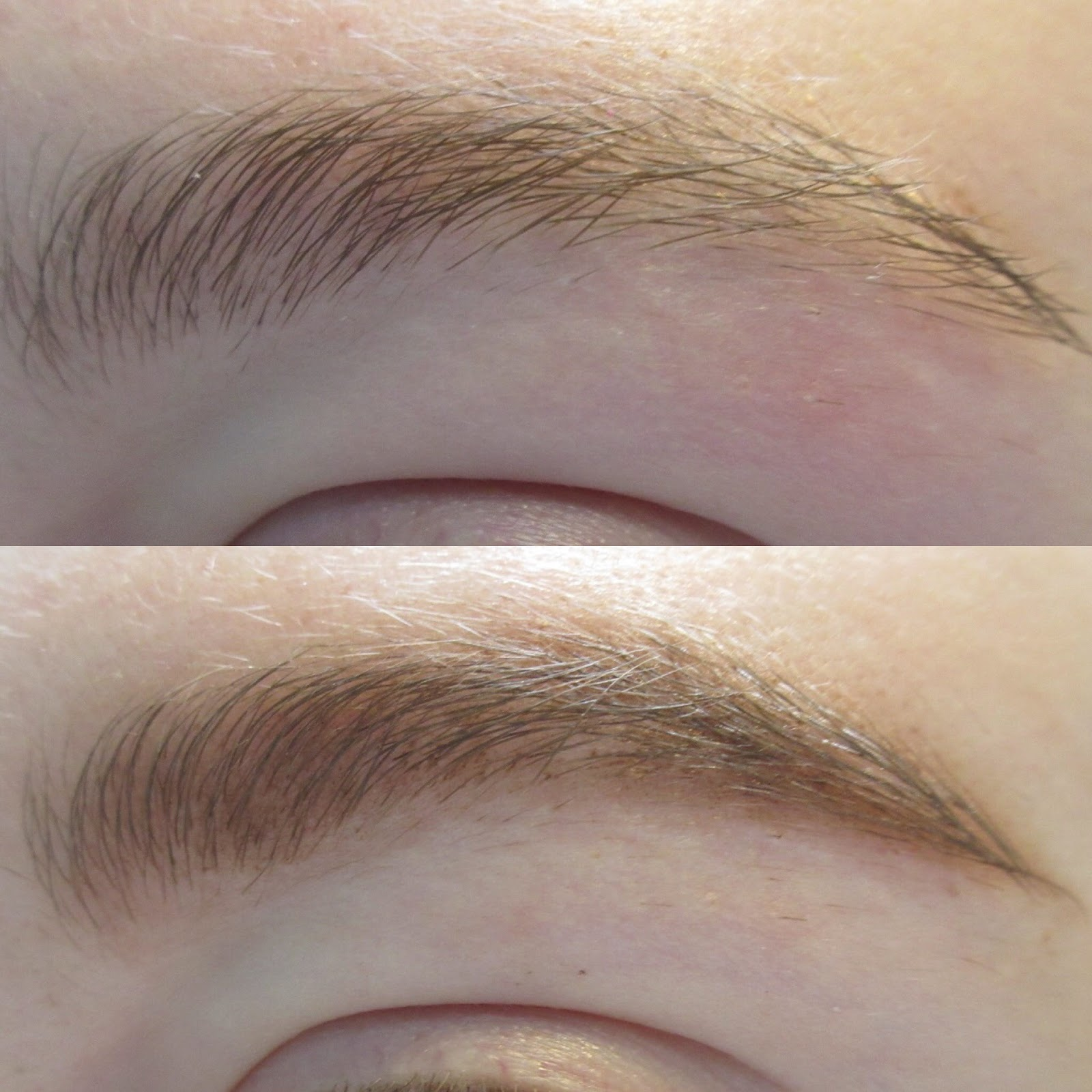 24479eaa467 Maybelline Brow Drama Pomade Crayon Review+Swatches (Auburn) - Neon ...