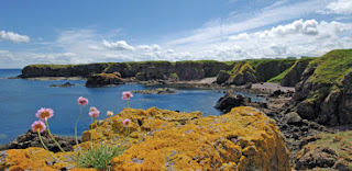 Eyemouth Scotland Coastline