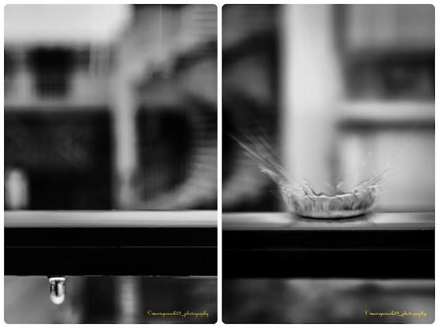#macro_creative_pictures #1