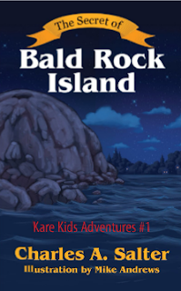 the secret of bald rock island cover