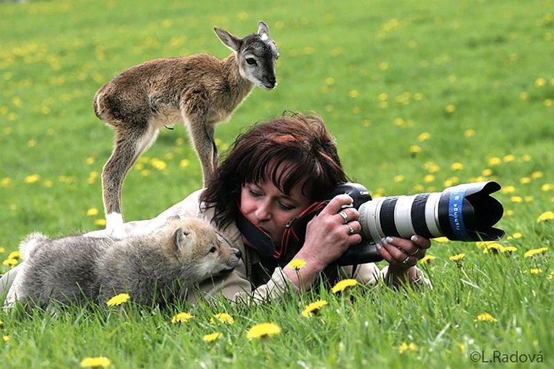 20 Foto Hewan Menjadi Fotografer