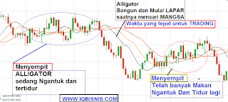strategi indikator iq option paling akurat