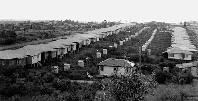 Outhouses can be seen behind these rows of houses in Norman Park, 1950.  Places like this were still unsewered at the time (John Oxley Library)