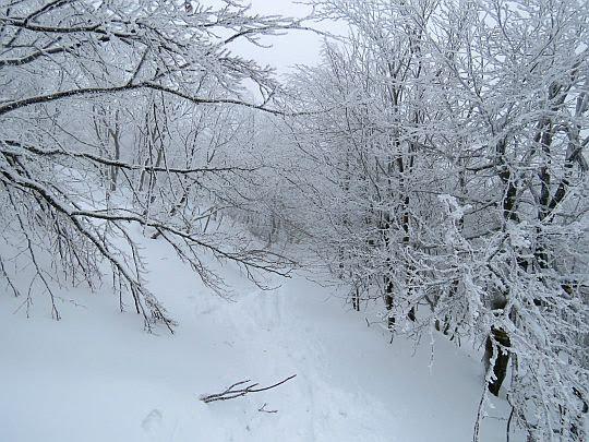 Na przełęczy między Małą i Wielką Rawką.