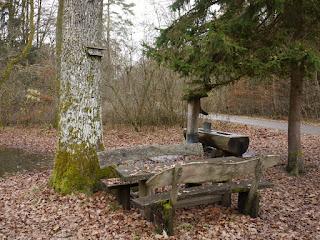 Achterlacke (8er-Lacke) im Forstenrieder Park