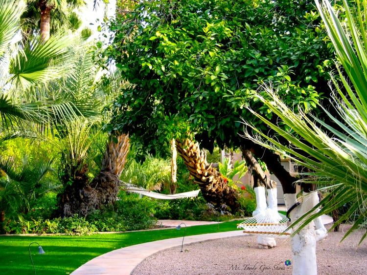 The Royal Palms Hotel in Phoenix, Arizona is a great place to de-stress! | Ms. Toody Goo Shoes
