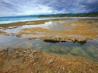 Destinasi Wisata Pantai Di Jawa Barat yang Mempesona
