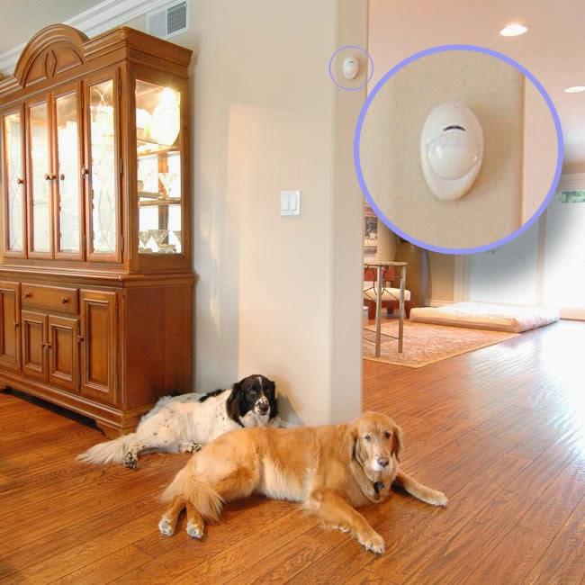 Allarme casa inserito anche con cani e gatti pet - Allarmi per casa ...