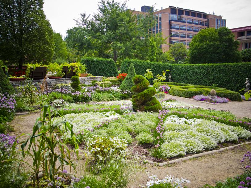 Allen Centennial Gardens   Madison WI