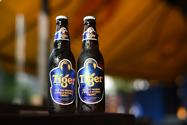 Tiger Beer Saving Tigers with the 3890Tigers Campaign ...