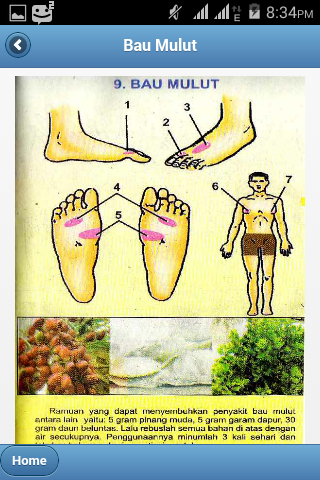 Titik pijat refleksi bau mulut beserta ramuan herbal yang di gunakan untuk mengobatinya