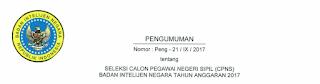 Penerimaan CPNS Badan Intelijen Negara